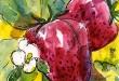 strawberry-sm