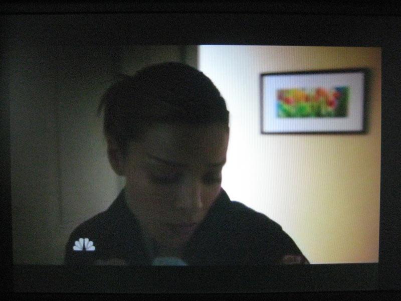 NBC's Chicago Fire - Rochelle Weiner artwork