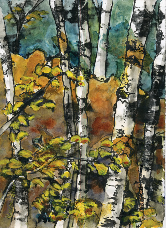 Birchgrove-sm