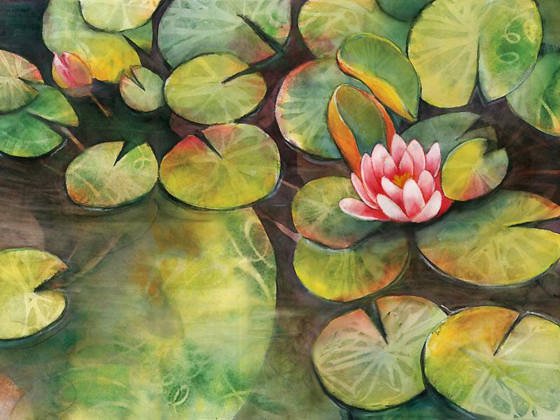 Waterlilies-sm